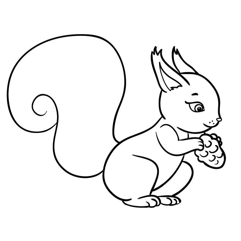 Картинки с животными шаблоны