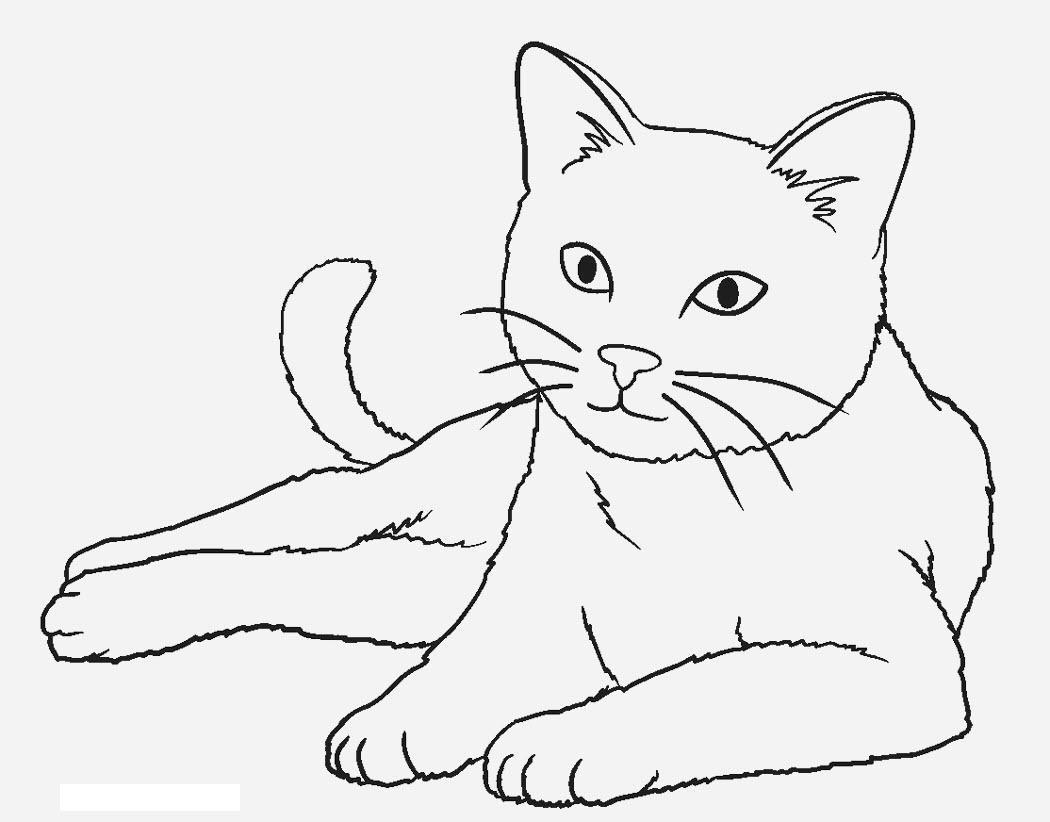 Картинки кошек в карандаше детские