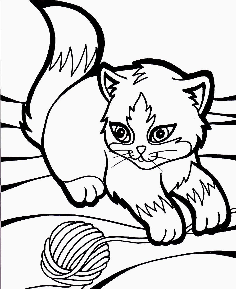 котенок черно белый раскраска