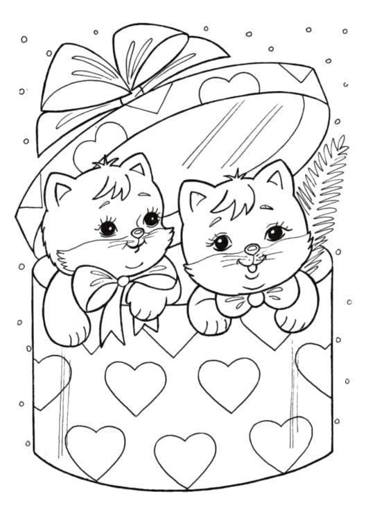 котенок в коробке раскраска