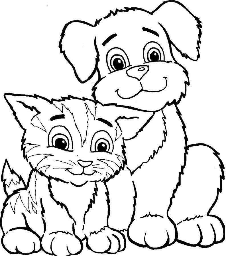 котики и собачки