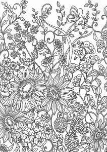 раскраска антистресс цветы в саду