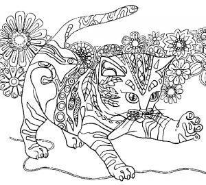 раскраска антистресс кот играет
