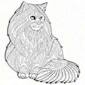 раскраска антистресс котики