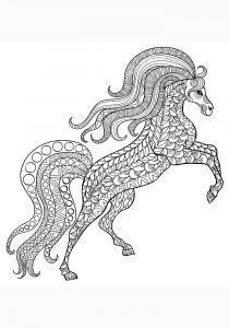 раскраска антистресс красивая лошадь
