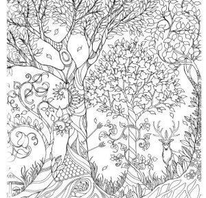 раскраска антистресс осенний лес
