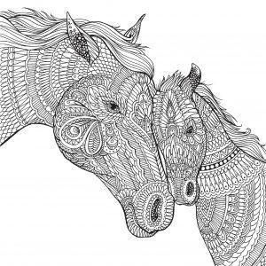 раскраска антистресс лошадь с жеребенком