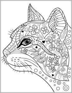 раскраска антистресс морда кота