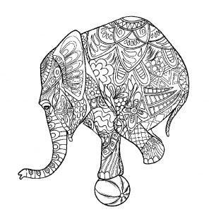 раскраска антистресс слон с мячом