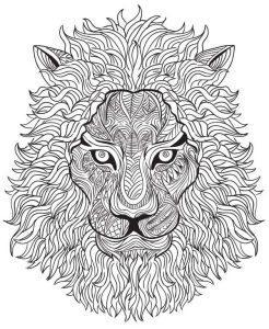 раскраска антистресс животные лев