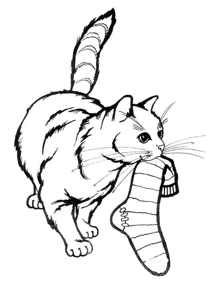 раскраска играющий котенок