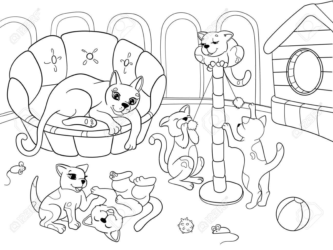 Раскраски котята, кошки, котики распечатать бесплатно, скачать