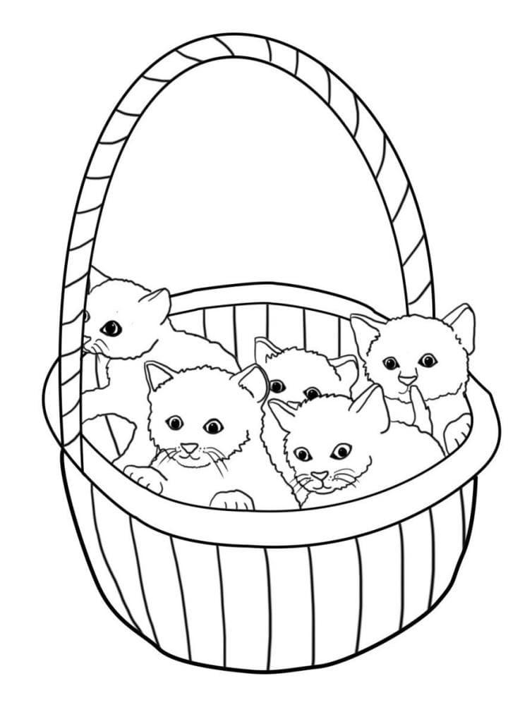 милые картинки котиков раскраски распечатать можно купить