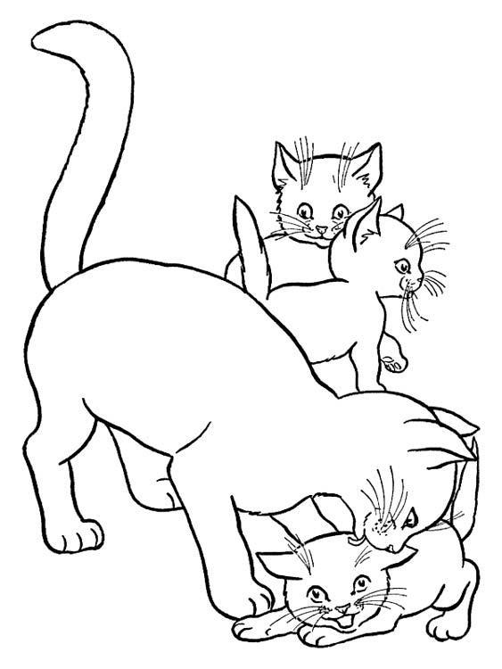 раскраска животные котята