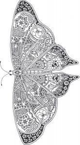раскраски антистресс бабочка махаон распечатать