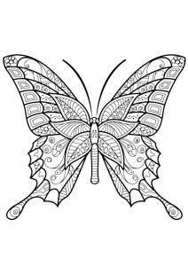 раскраски антистресс бабочка обычная распечатать