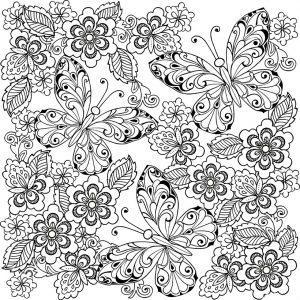 раскраски антистресс бабочки распечатать