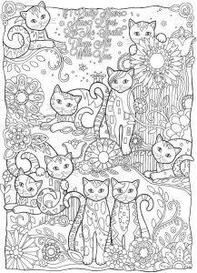 раскраска антистресс котята распечатать