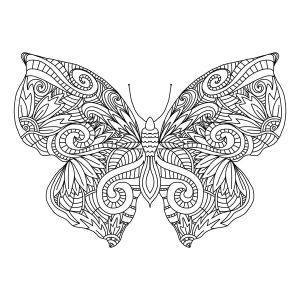 раскраски антистресс красивая бабочка распечатать