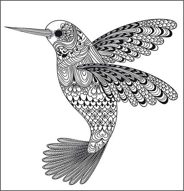 раскраски антистресс птицы колибри