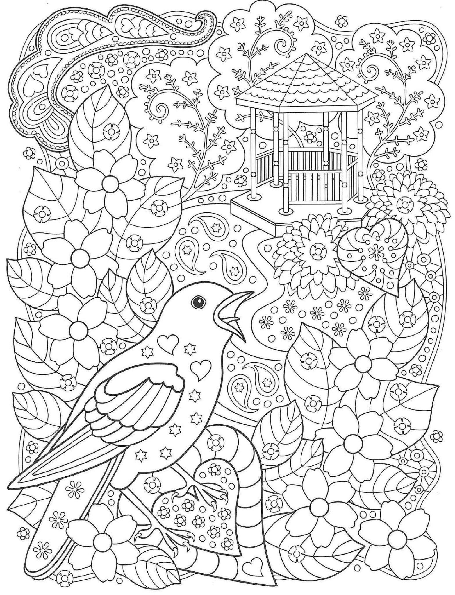 раскраски антистресс птицы в саду