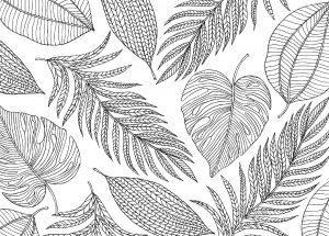 раскраски антистресс разные листья