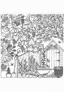 rраскраска антистресс сады