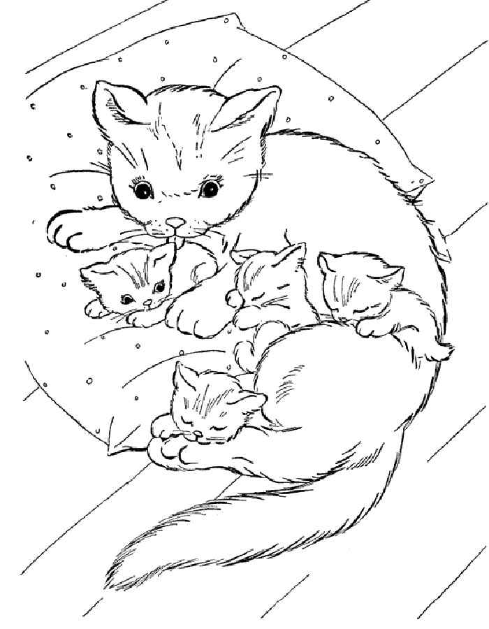 раскраски милые котята