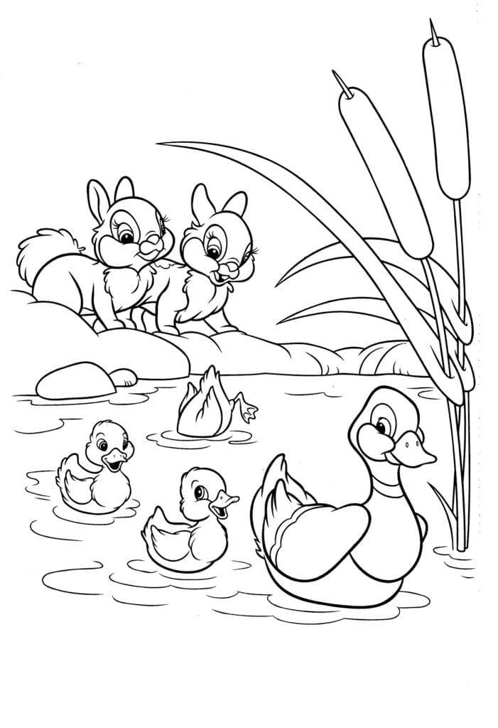 рисунки раскраски для девочек 5 лет