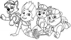 Раскраска Райдер и 3 щенка