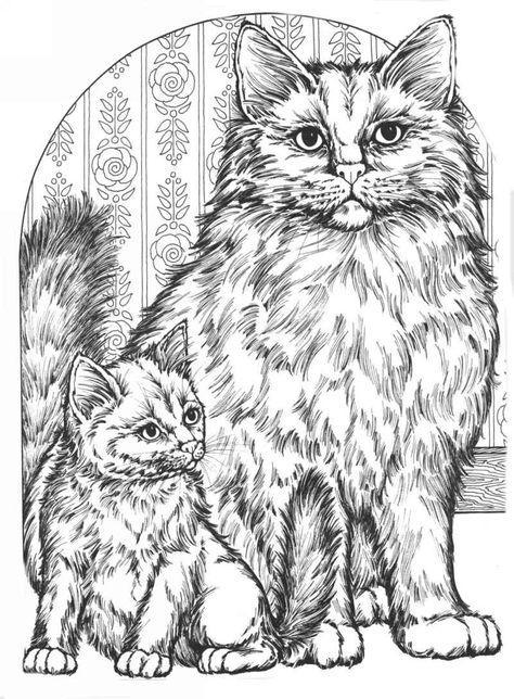 сложные раскраски кошки