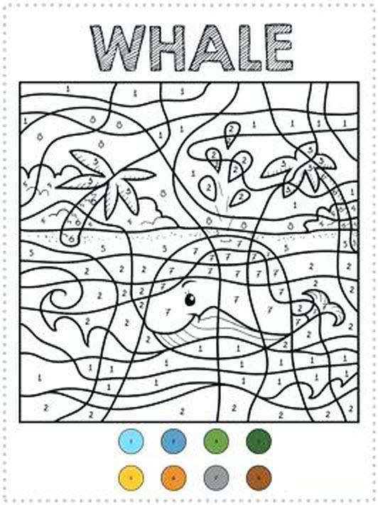раскраска по номерам кит