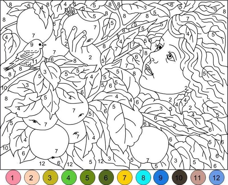 color kit раскраски по номерам