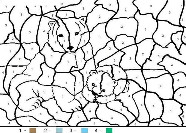 раскраски по номерам медведь