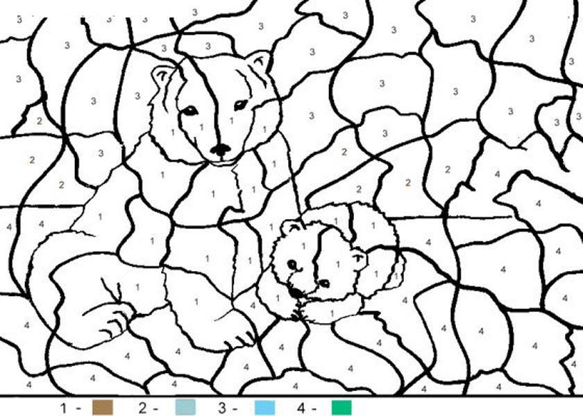 раскраски по номерам медведица с медвежонком