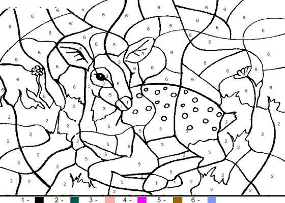 раскраски по номерам олень