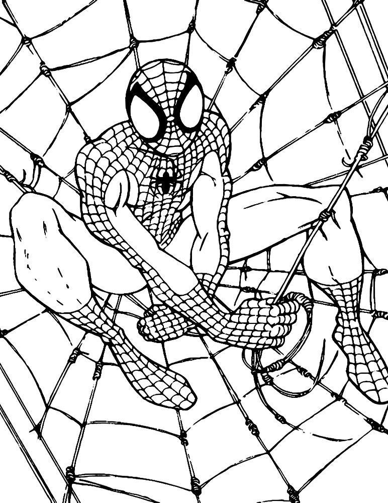 картинки разукрашки человека паука старица