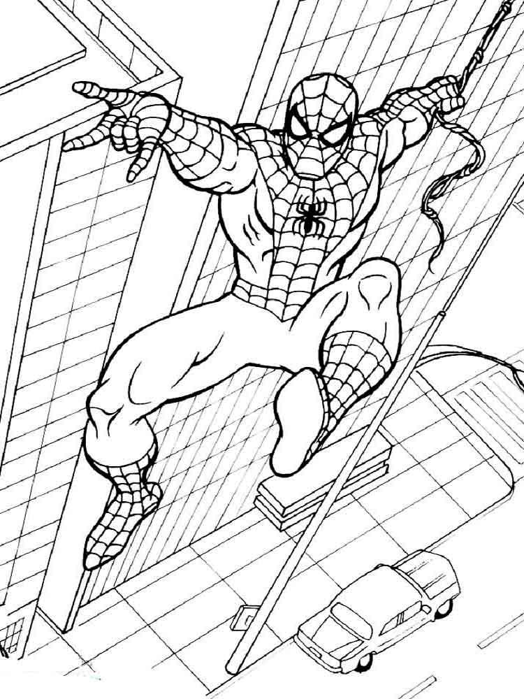 Раскраска Человек паук распечатать: бесплатно, в хорошем ...