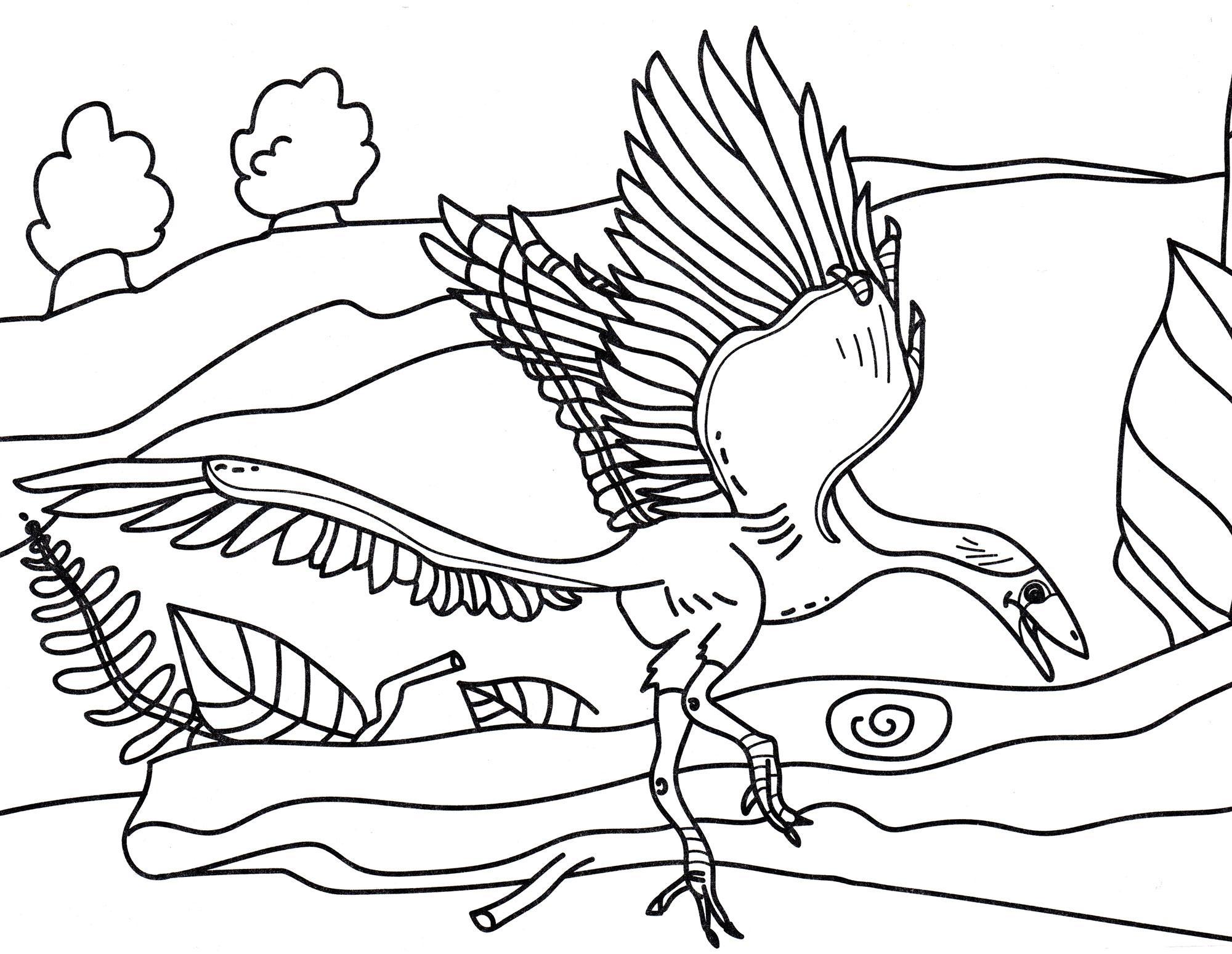 раскраска динозавр археоптерикс