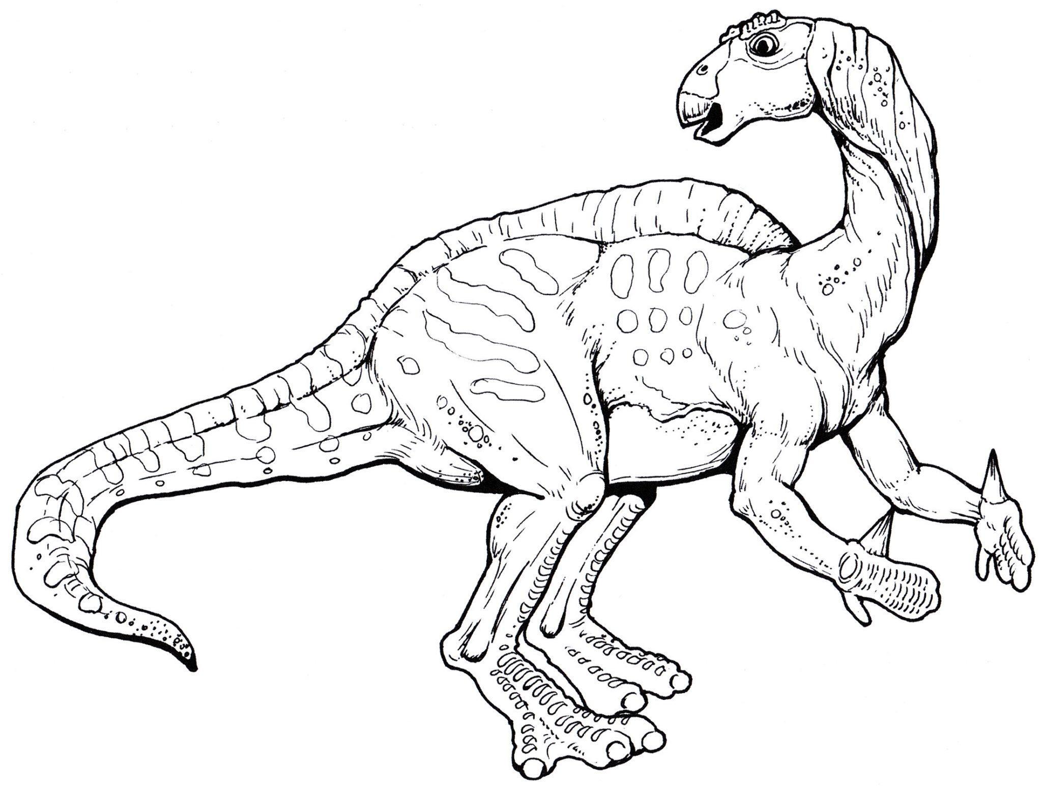 раскраска динозавр игуанодон
