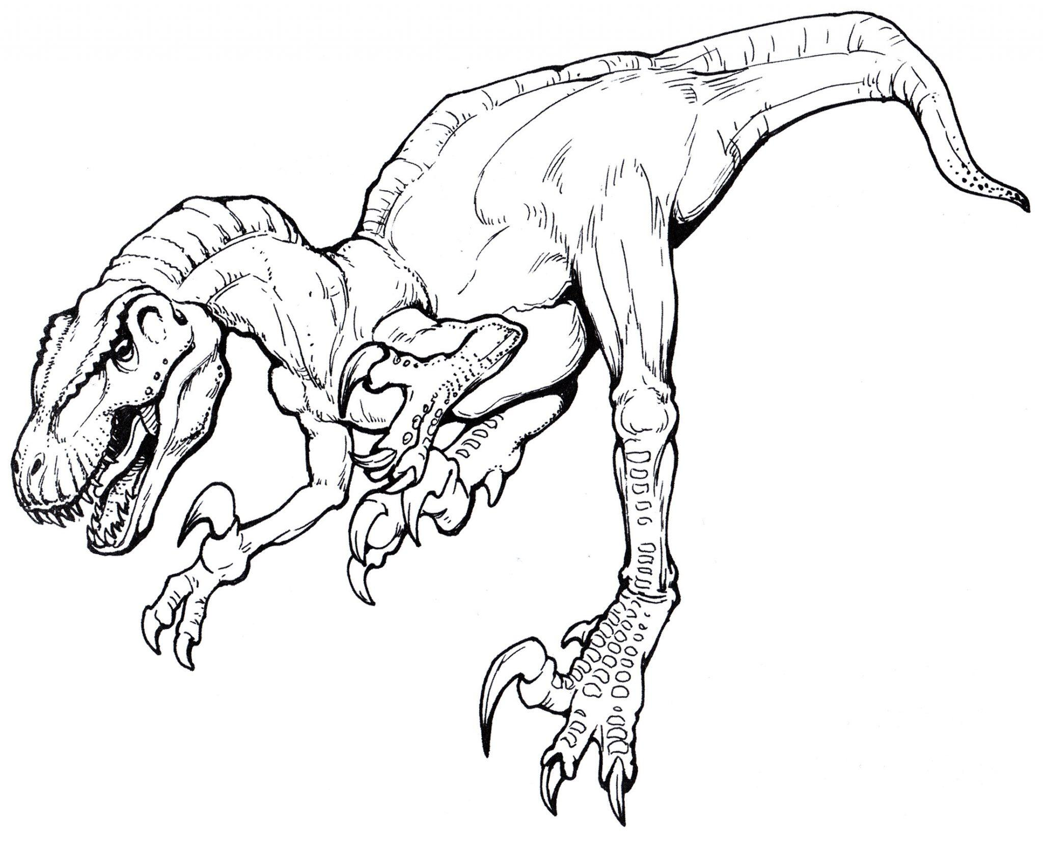 раскраска динозавр мегараптор