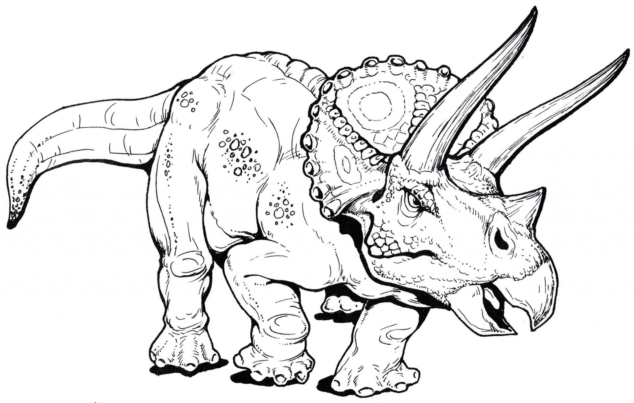 раскраска динозавр трицераптор
