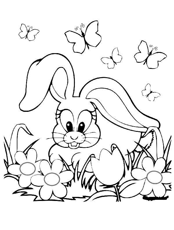 раскраска для девочек заяц