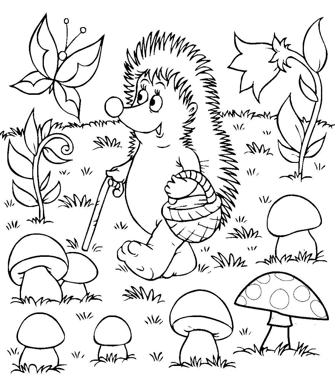 раскраска ежик собирает грибы