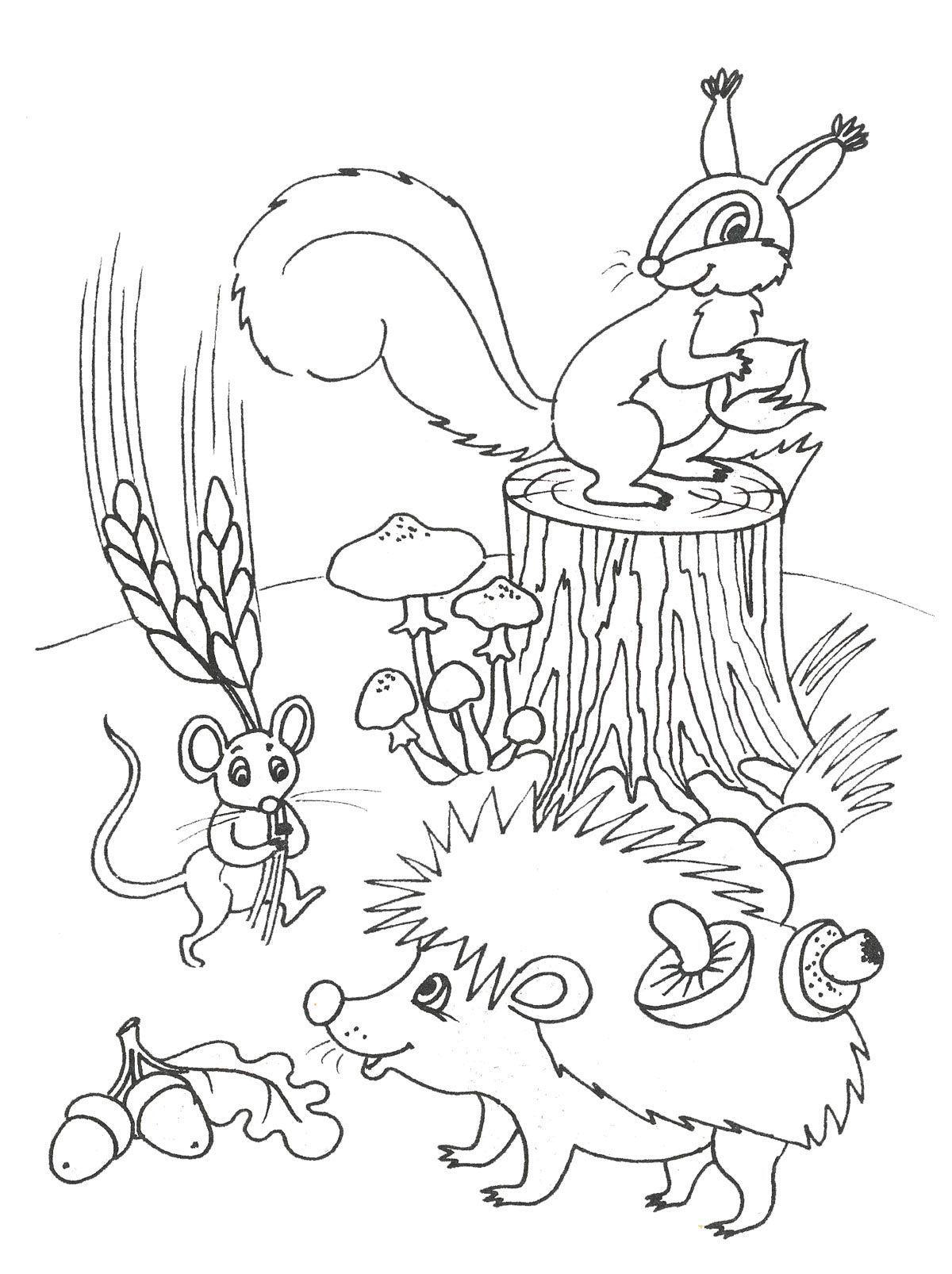 раскраска ежик угощает грибами друзей
