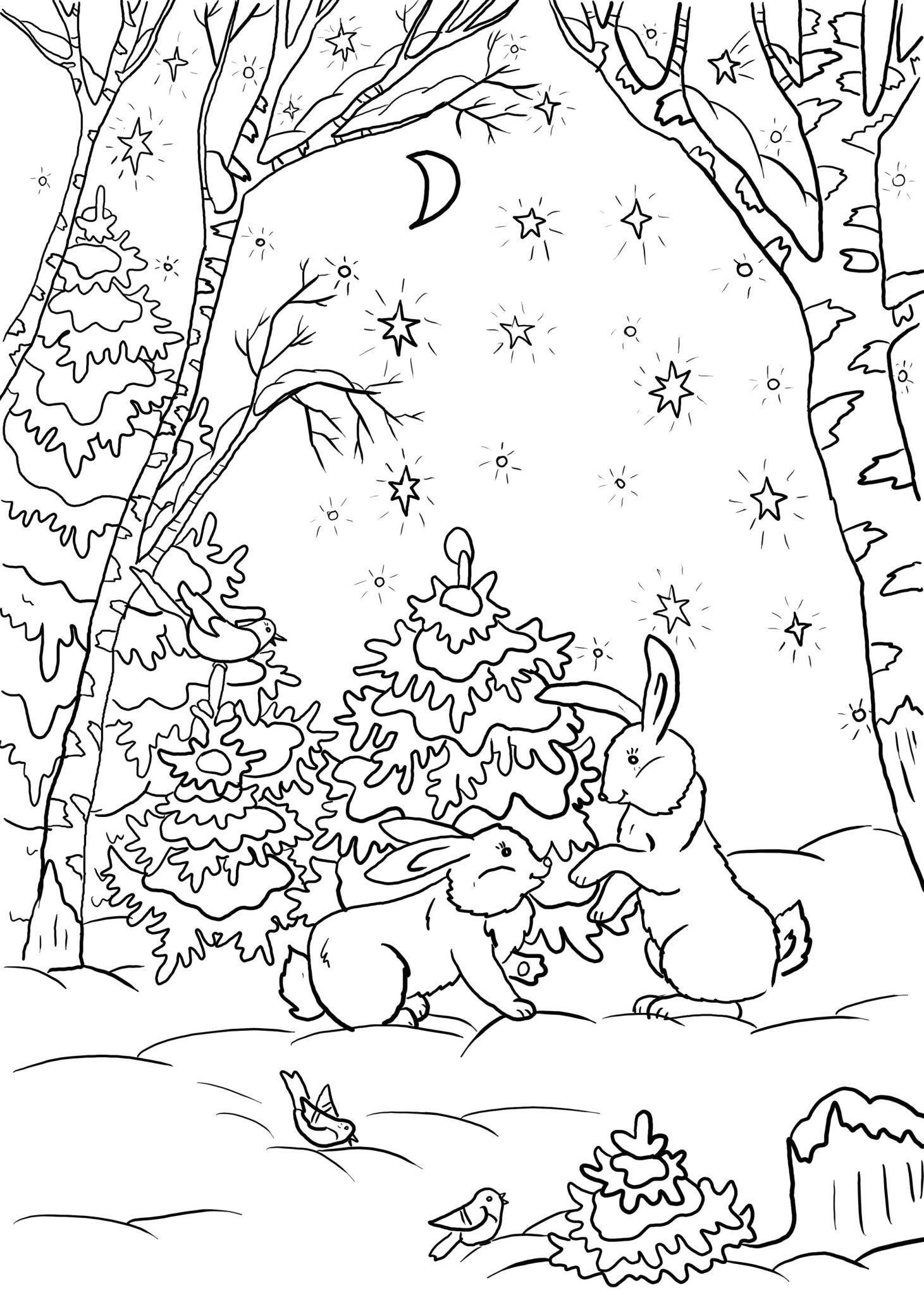 раскраска заяц для детей 4 5 лет