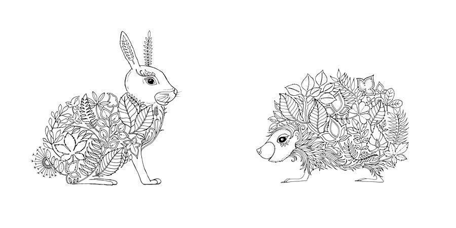 раскраска заяц и ежик