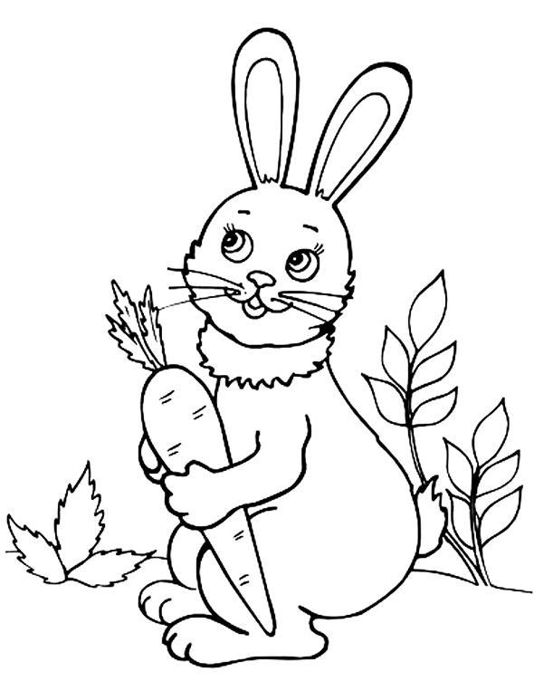 раскраска заяц с морковкой