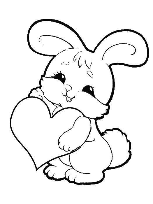 раскраска заяц с сердцем