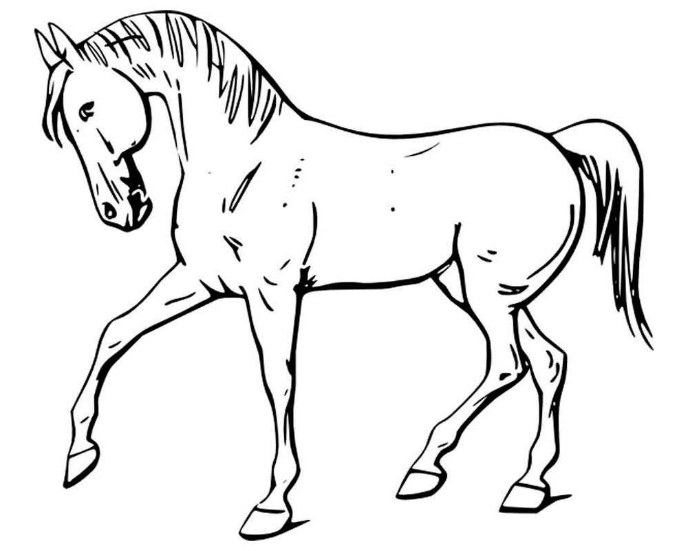 распечатать изображение коня предполагают